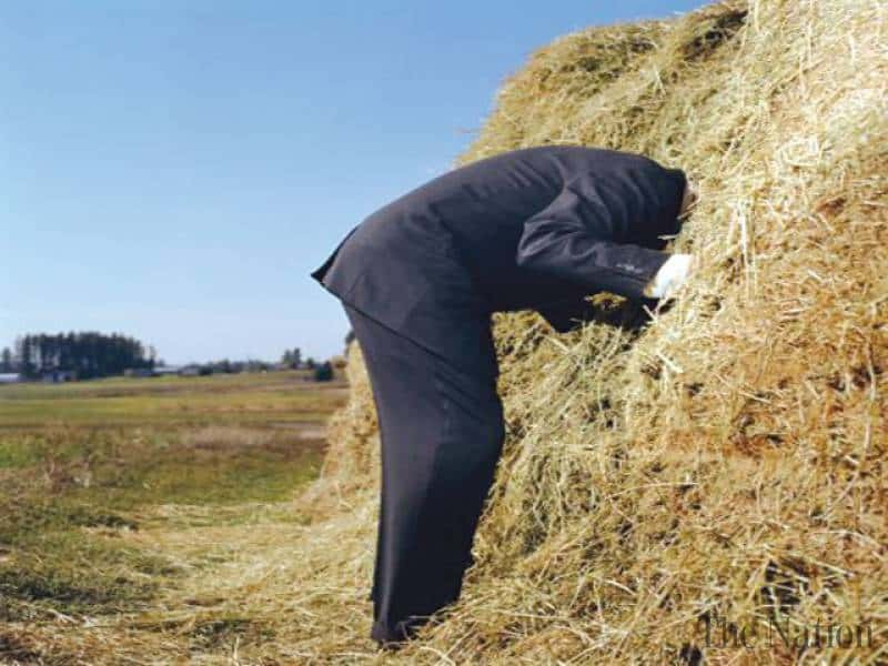 Finding that needle in the haystack