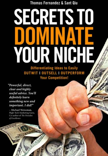 secrets-to-dominate-your-niche-book-sypnosis